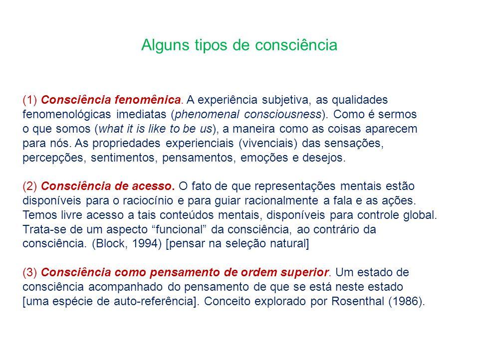 Alguns tipos de consciência (1) Consciência fenomênica. A experiência subjetiva, as qualidades fenomenológicas imediatas (phenomenal consciousness). C