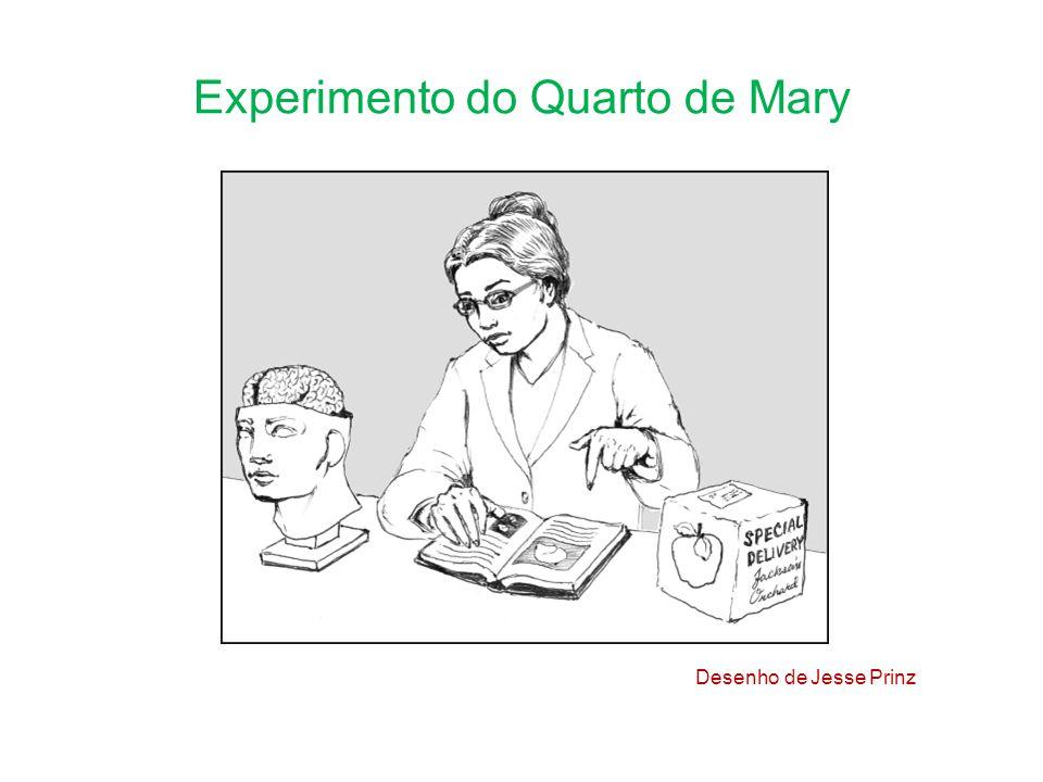 Experimento do Quarto de Mary Desenho de Jesse Prinz