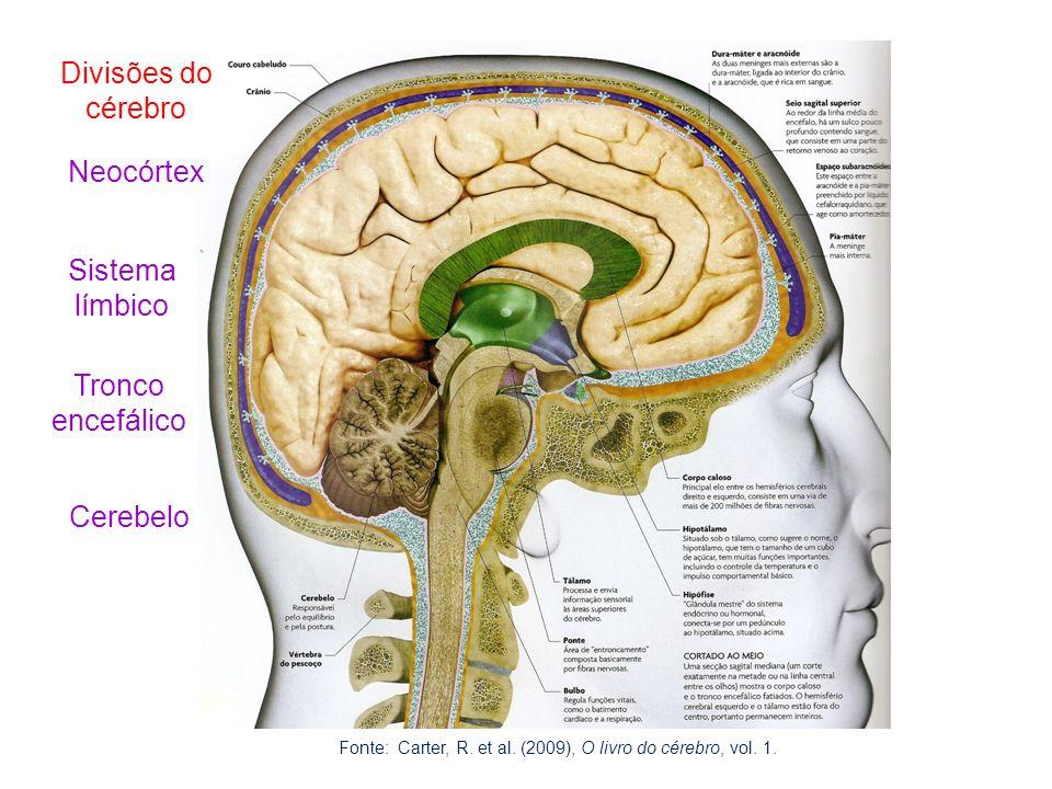 Divisões do cérebro Neocórtex Sistema límbico Tronco encefálico Cerebelo Fonte: Carter, R. et al. (2009), O livro do cérebro, vol. 1.