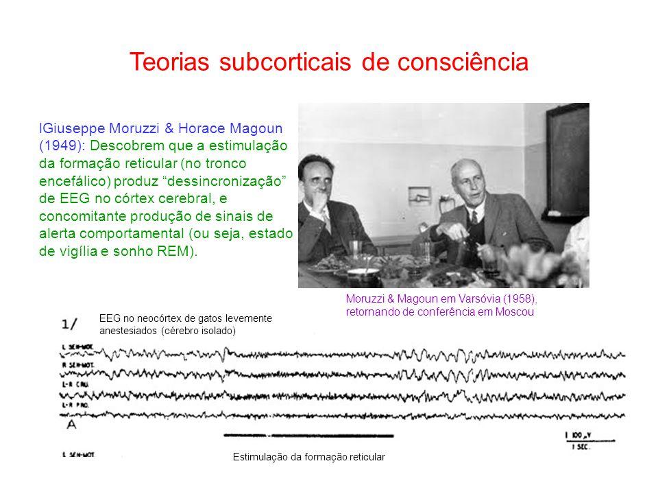 Teorias subcorticais de consciência Giuseppe Moruzzi & Horace Magoun (1949): Descobrem que a estimulação da formação reticular (no tronco encefálico) produz dessincronização de EEG no córtex cerebral, e concomitante produção de sinais de alerta comportamental (ou seja, estado de vigília e sonho REM).
