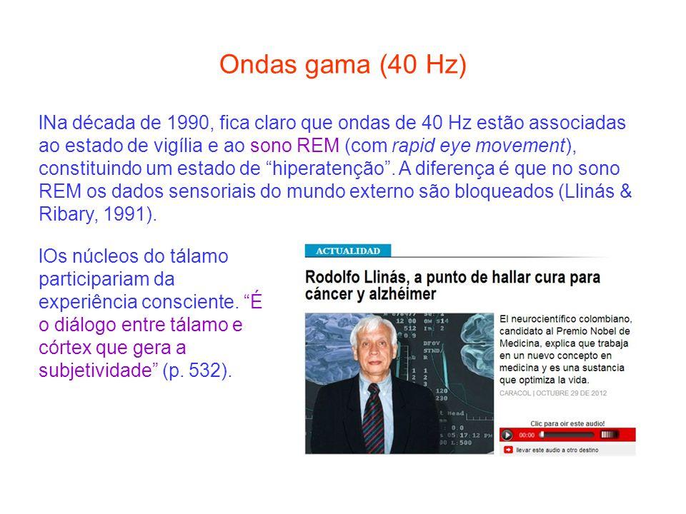 Ondas gama (40 Hz) lNa década de 1990, fica claro que ondas de 40 Hz estão associadas ao estado de vigília e ao sono REM (com rapid eye movement), con