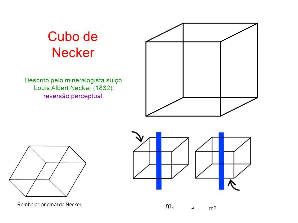 Cubo de Necker Descrito pelo mineralogista suiço Louis Albert Necker (1832): reversão perceptual.