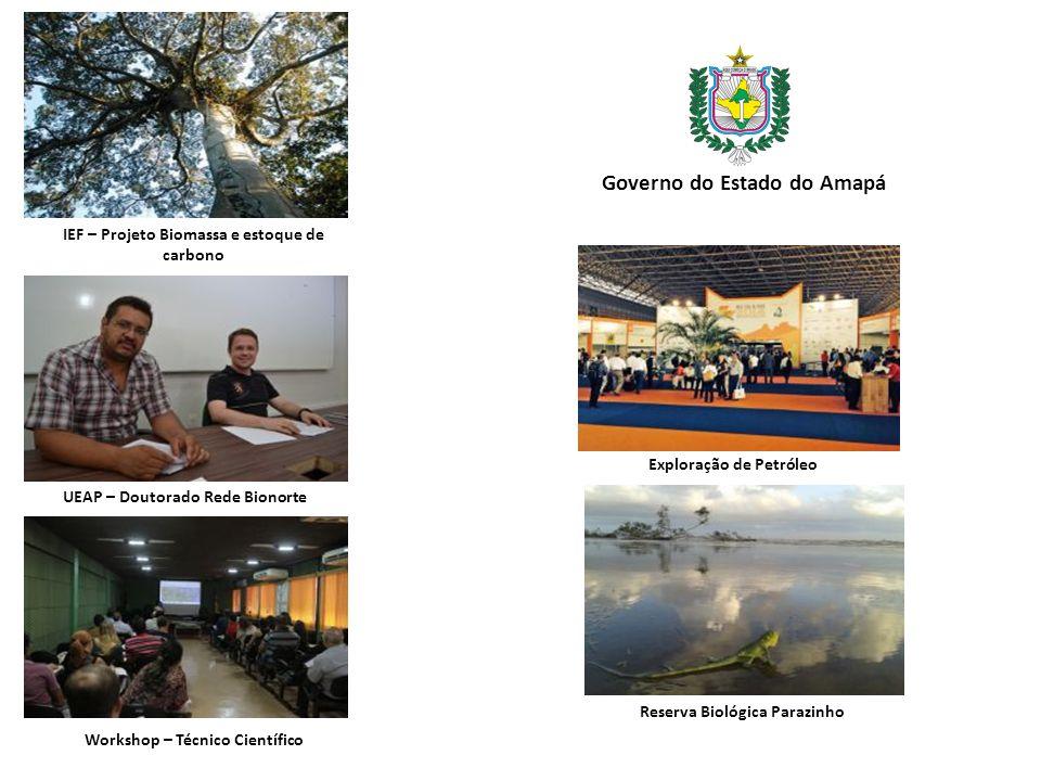IEF – Projeto Biomassa e estoque de carbono Governo do Estado do Amapá UEAP – Doutorado Rede Bionorte Workshop – Técnico Científico Exploração de Petróleo Reserva Biológica Parazinho