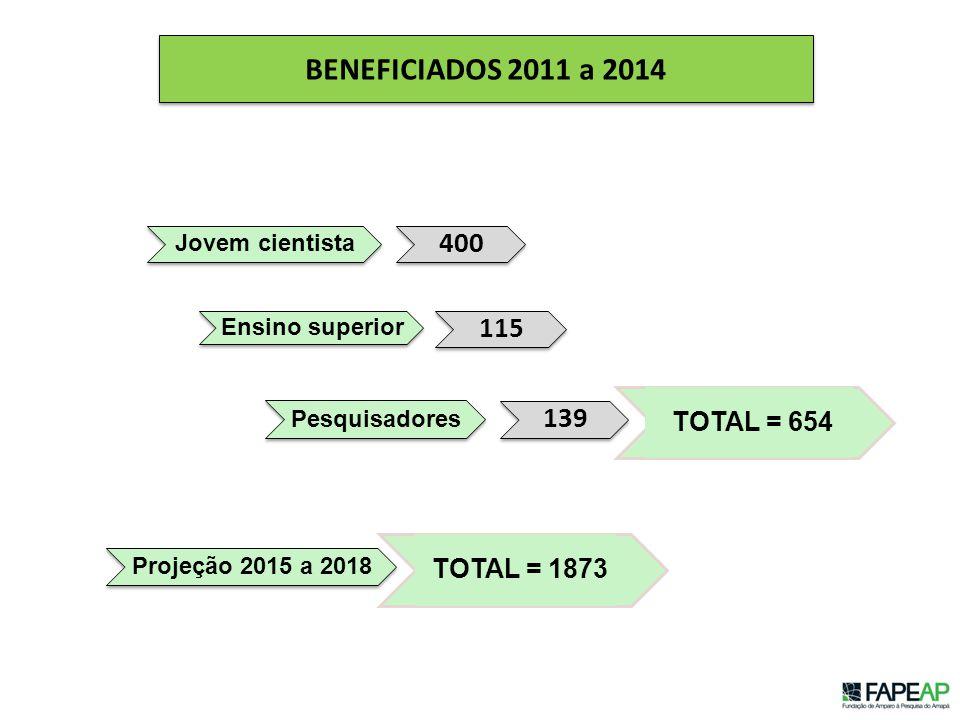 BENEFICIADOS 2011 a 2014 Jovem cientista 400 Ensino superior 115 Pesquisadores 139 Projeção 2015 a 2018 TOTAL = 654 TOTAL = 1873
