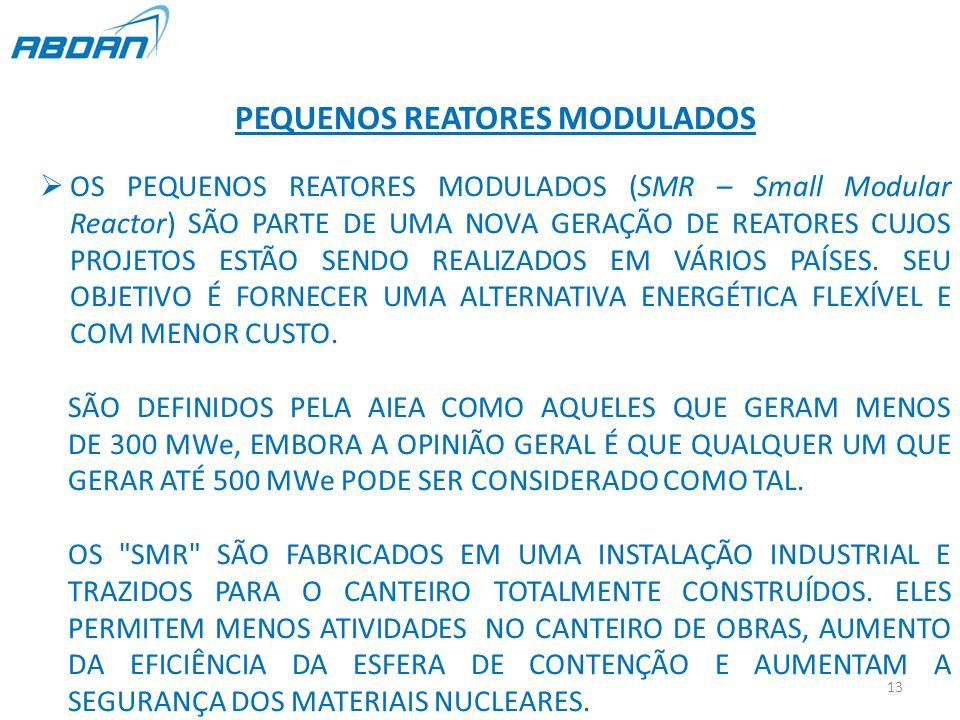 PEQUENOS REATORES MODULADOS  OS PEQUENOS REATORES MODULADOS (SMR – Small Modular Reactor) SÃO PARTE DE UMA NOVA GERAÇÃO DE REATORES CUJOS PROJETOS ESTÃO SENDO REALIZADOS EM VÁRIOS PAÍSES.