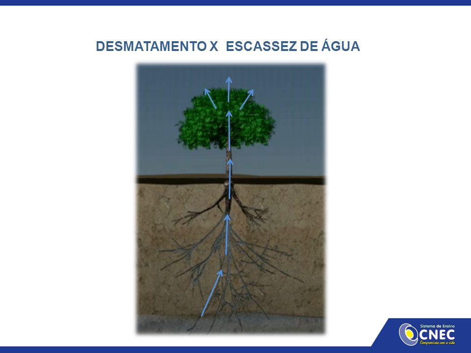 DESMATAMENTO X ESCASSEZ DE ÁGUA