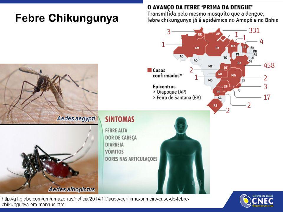 Febre Chikungunya http://g1.globo.com/am/amazonas/noticia/2014/11/laudo-confirma-primeiro-caso-de-febre- chikungunya-em-manaus.html