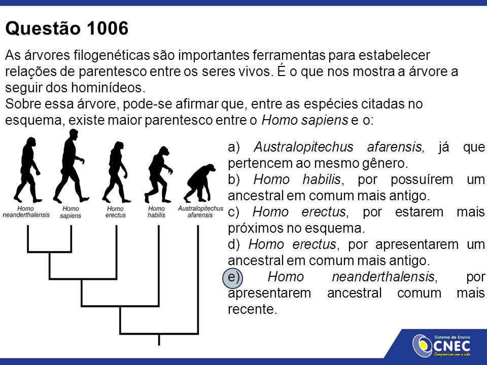 Questão 1006 As árvores filogenéticas são importantes ferramentas para estabelecer relações de parentesco entre os seres vivos. É o que nos mostra a á
