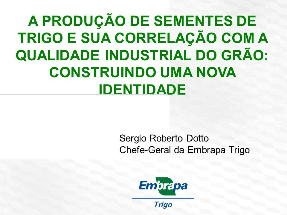 Obrigado Sergio Roberto Dotto cnpt.chgeral@embrapa.br www.embrapa.br/trigo Tela de encerramento: opção português