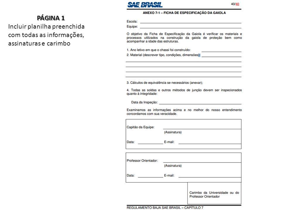 PÁGINA 1 Incluir planilha preenchida com todas as informações, assinaturas e carimbo