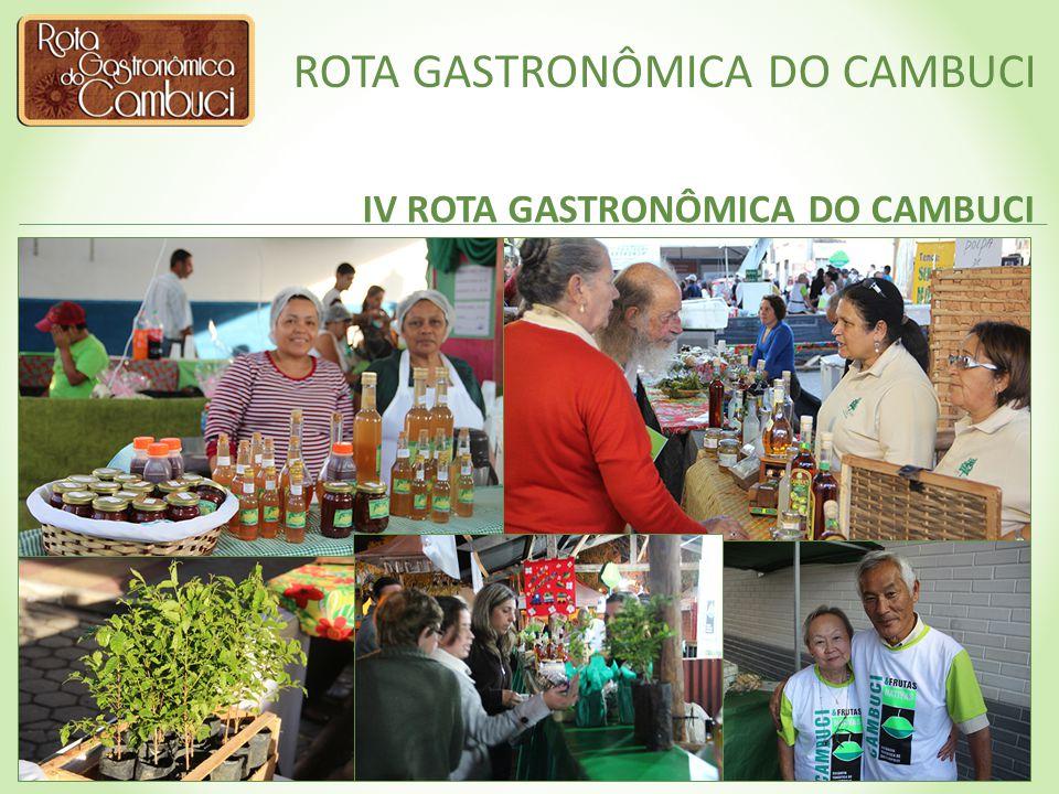 ROTA GASTRONÔMICA DO CAMBUCI PUBLICAÇÕES Livro de Receitas Livro Cambuci