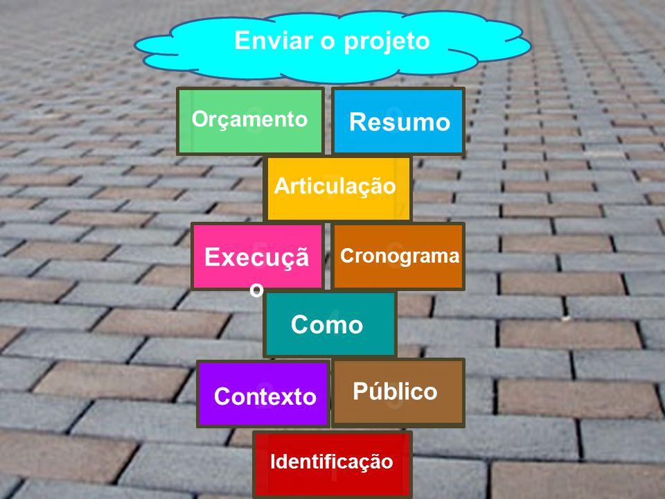 1 23 4 56 7 89 Céu Identificação Contexto Público ComoExecuçã o Cronograma Articulação Orçamento Resumo Enviar o projeto