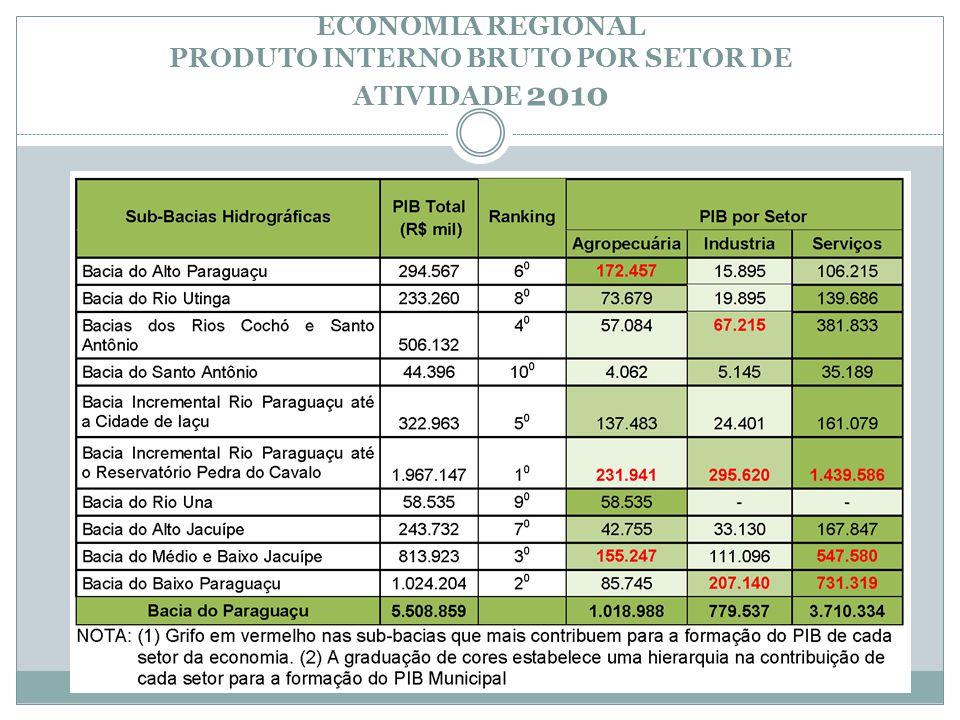 ECONOMIA REGIONAL PRODUTO INTERNO BRUTO POR SETOR DE ATIVIDADE 2010