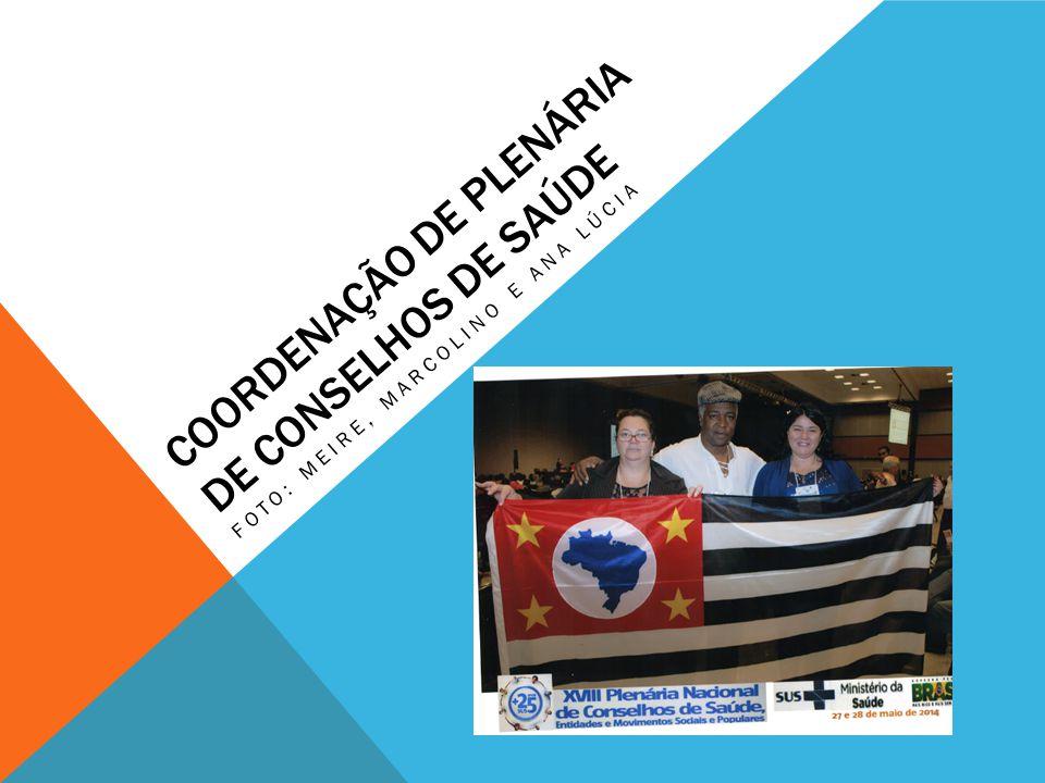 PLENÁRIA DE CONSELHO DE SAÚDE Quase duas mil pessoas que participaram nos dias 27 e 28 de maio de 2014 da Plenária Nacional de Conselhos de Saúde, que inclui também entidades e movimentos sociais populares em um ato político em defesa do Sistema Único de Saúde (SUS).