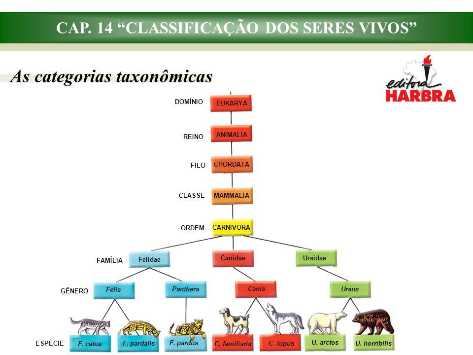 """CAP. 14 """"CLASSIFICAÇÃO DOS SERES VIVOS"""" As categorias taxonômicas DOMÍNIO REINO FILO CLASSE ORDEM FAMÍLIA ESPÉCIE EUKARYA ANIMALIA CHORDATA MAMMALIA G"""