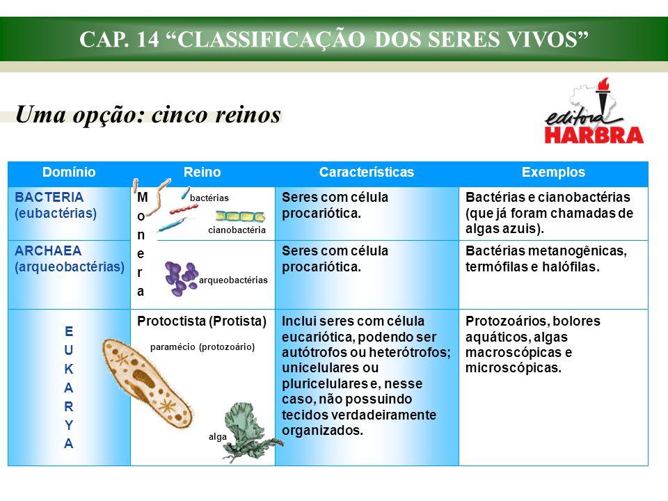 """CAP. 14 """"CLASSIFICAÇÃO DOS SERES VIVOS"""" Uma opção: cinco reinos Bactérias metanogênicas, termófilas e halófilas. Seres com célula procariótica. ARCHAE"""