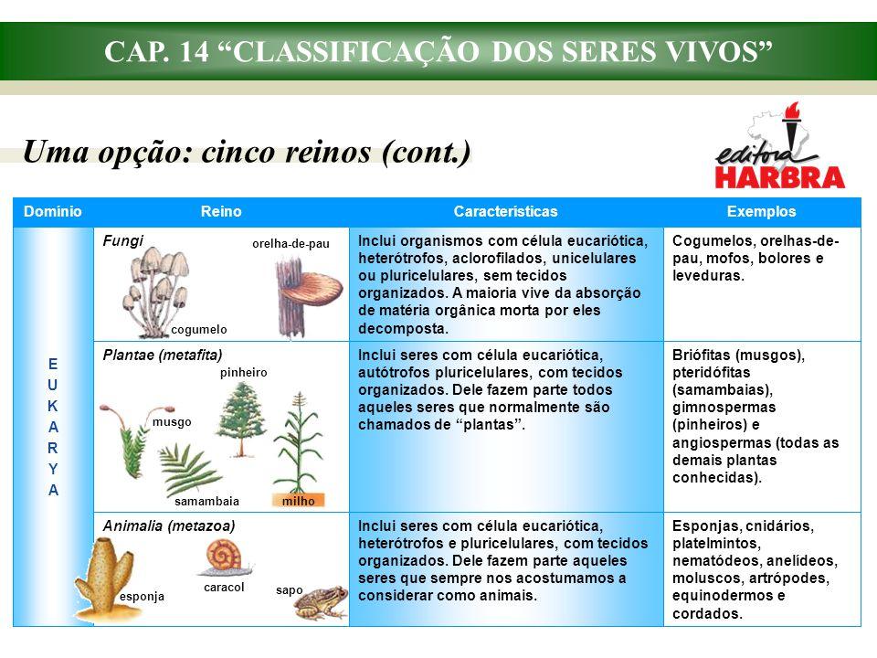 """CAP. 14 """"CLASSIFICAÇÃO DOS SERES VIVOS"""" Uma opção: cinco reinos (cont.) Inclui seres com célula eucariótica, heterótrofos e pluricelulares, com tecido"""