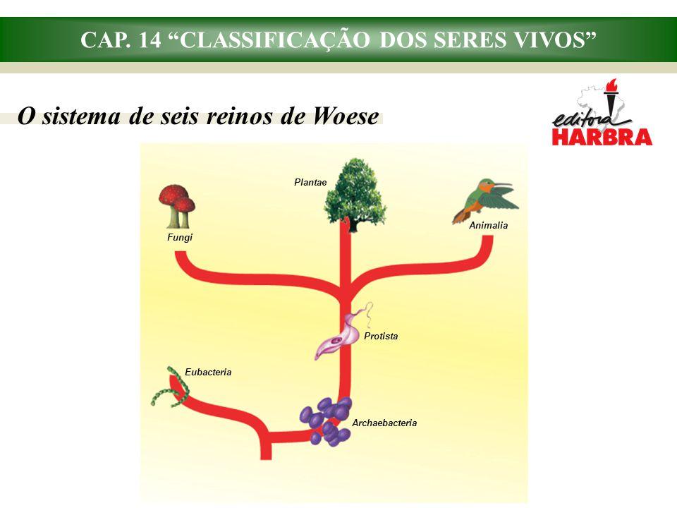 """CAP. 14 """"CLASSIFICAÇÃO DOS SERES VIVOS"""" O sistema de seis reinos de Woese Plantae Fungi Animalia Archaebacteria Protista Eubacteria"""