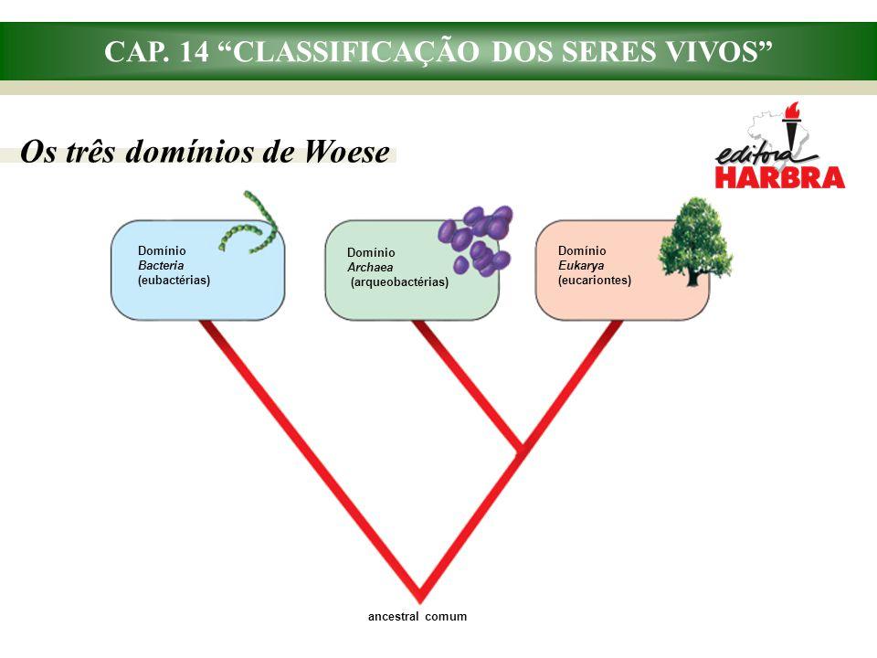 """CAP. 14 """"CLASSIFICAÇÃO DOS SERES VIVOS"""" Os três domínios de Woese Domínio Bacteria (eubactérias) Domínio Eukarya (eucariontes) Domínio Archaea (arqueo"""