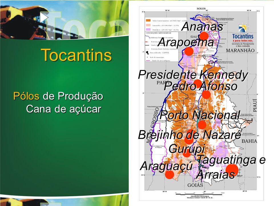 Ananas Arapoema Presidente Kennedy Pedro Afonso Porto Nacional Brejinho de Nazaré Taguatinga e Arraias Gurupi Araguaçú Tocantins Pólos de Produção Cana de açúcar