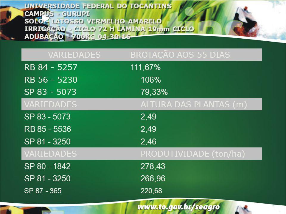 UNIVERSIDADE FEDERAL DO TOCANTINS CAMPUS - GURUPI SOLO - LATOSSO VERMELHO AMARELO IRRIGAÇÃO - CICLO 72 H LAMINA 19mm CICLO ADUBAÇÃO - 700KG 04-30-16 V