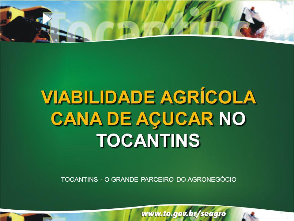 PRODUTO 2000 20052010 Cana de Açúcar ÁREA ha Litro Milhões ÁREA ha Litros Milhões ÁREA ha Litros Milhões 300NIHIL2.70012210.0001.512 ÁLCOOL - Tocantins