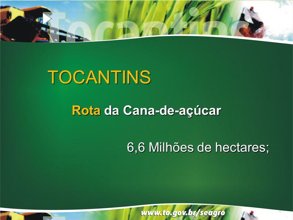 TOCANTINS Rota da Cana-de-açúcar 6,6 Milhões de hectares;