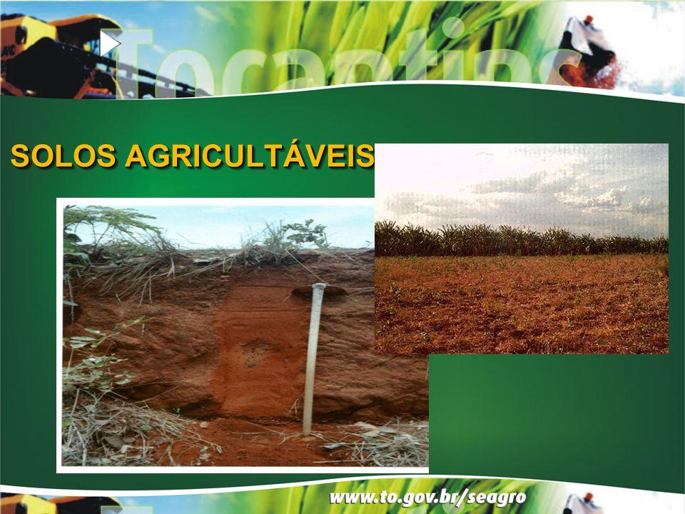 SOLOS AGRICULTÁVEIS