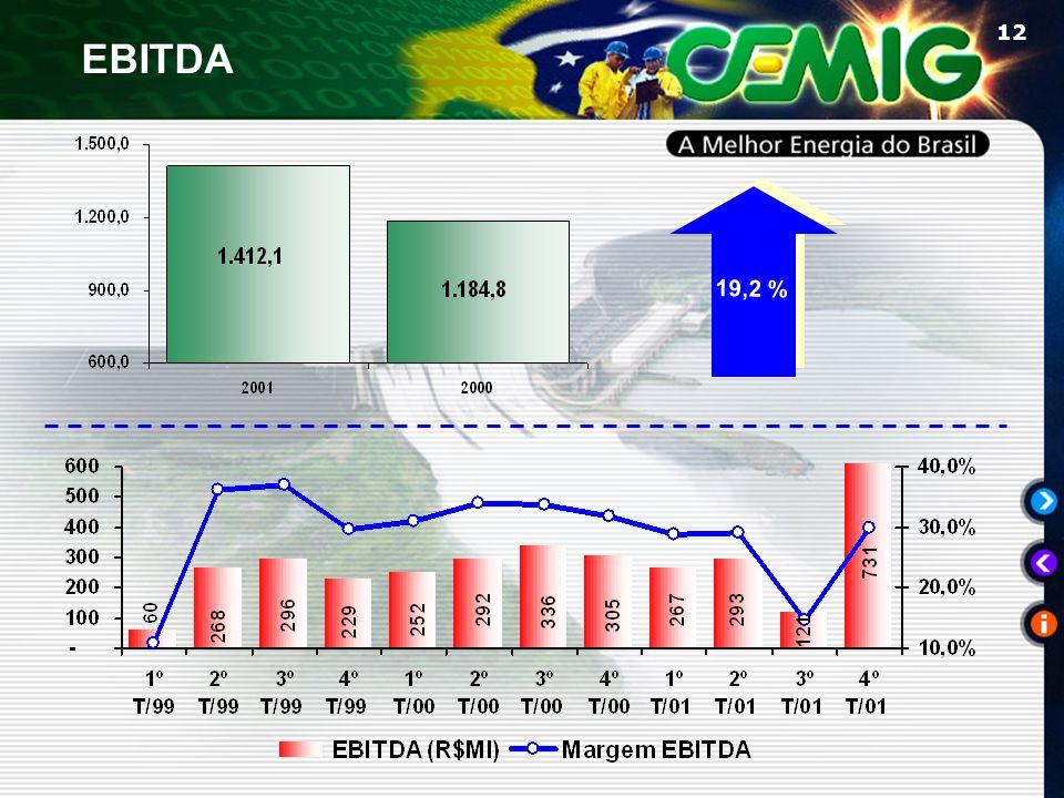 12 EBITDA 19,2 %