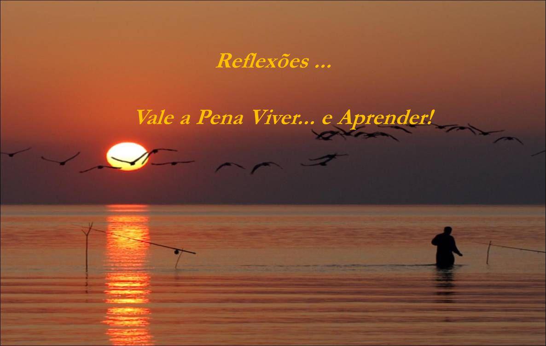 Reflexões... Vale a Pena Viver... e Aprender!