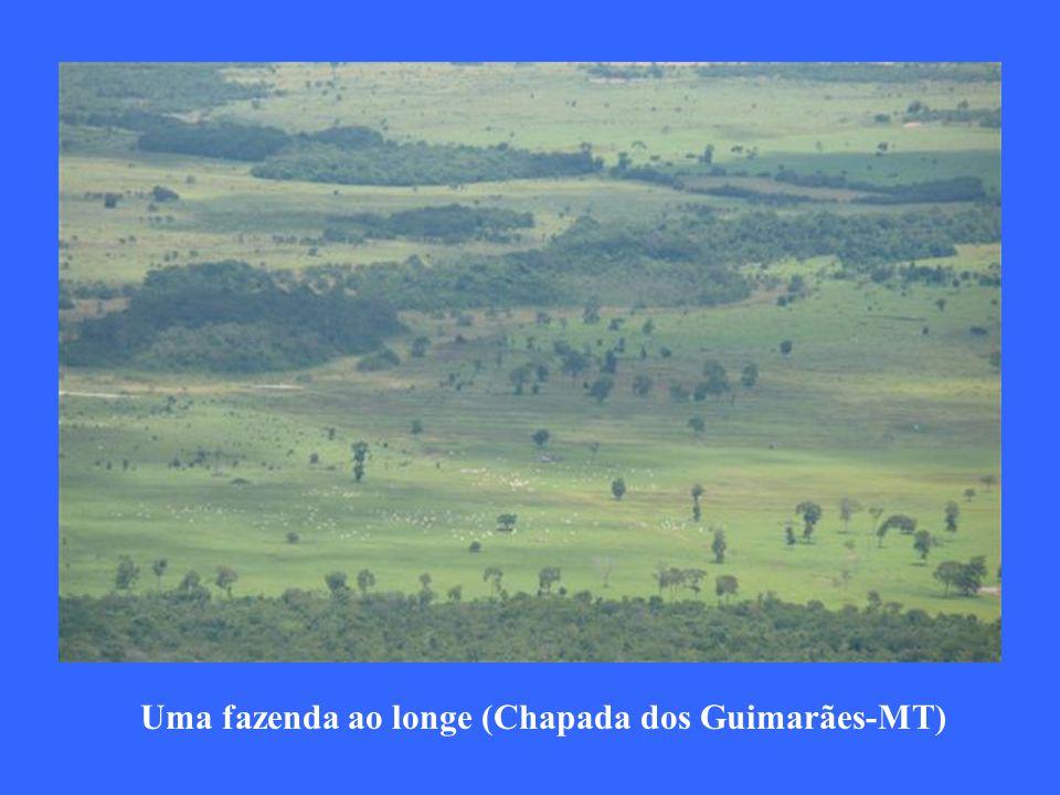 Uma fazenda ao longe (Chapada dos Guimarães-MT)