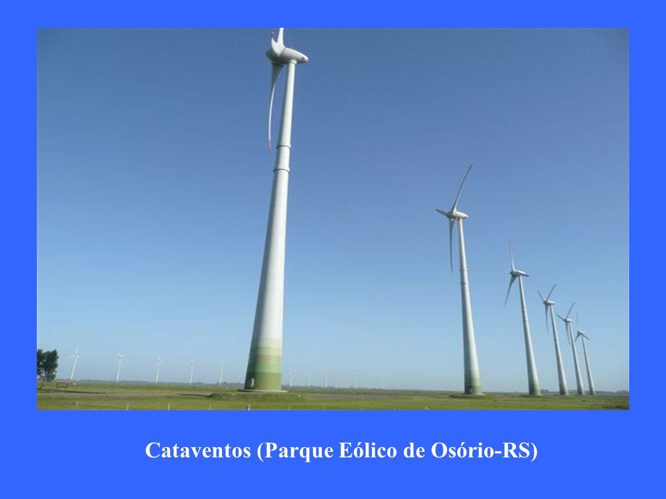 Cataventos (Parque Eólico de Osório-RS)