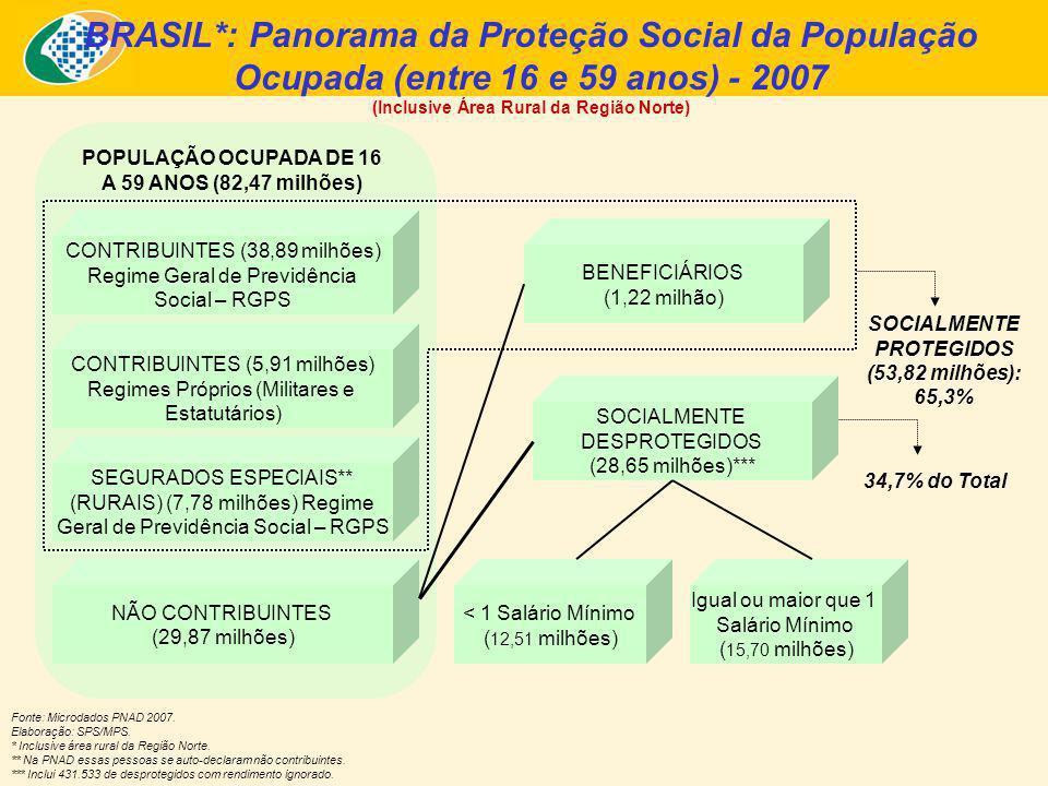 BRASIL*: Panorama da Proteção Social da População Ocupada (entre 16 e 59 anos) - 2007 (Inclusive Área Rural da Região Norte) Fonte: Microdados PNAD 2007.