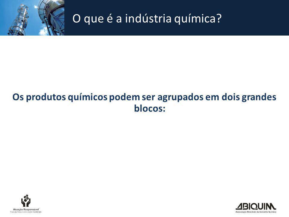 O que é a indústria química? Os produtos químicos podem ser agrupados em dois grandes blocos: