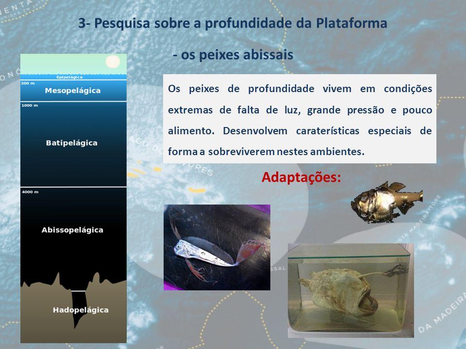 3- Pesquisa sobre a profundidade da Plataforma - os peixes abissais Os peixes de profundidade vivem em condições extremas de falta de luz, grande pres