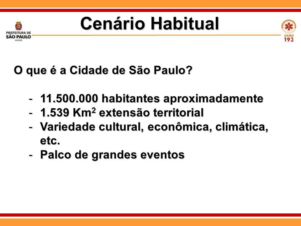 O que é a Cidade de São Paulo? -11.500.000 habitantes aproximadamente -1.539 Km 2 extensão territorial -Variedade cultural, econômica, climática, etc.