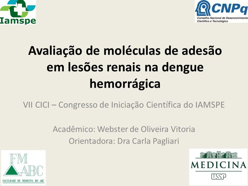 Avaliação de moléculas de adesão em lesões renais na dengue hemorrágica VII CICI – Congresso de Iniciação Científica do IAMSPE Acadêmico: Webster de O