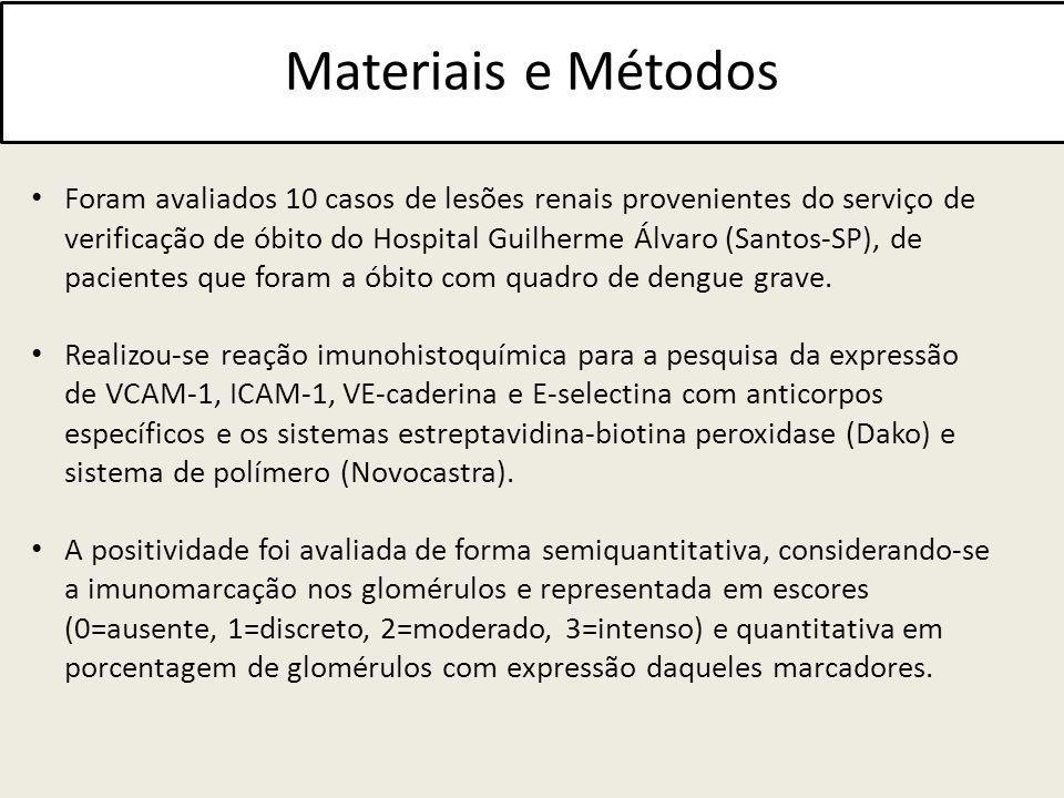 Materiais e Métodos Foram avaliados 10 casos de lesões renais provenientes do serviço de verificação de óbito do Hospital Guilherme Álvaro (Santos-SP)