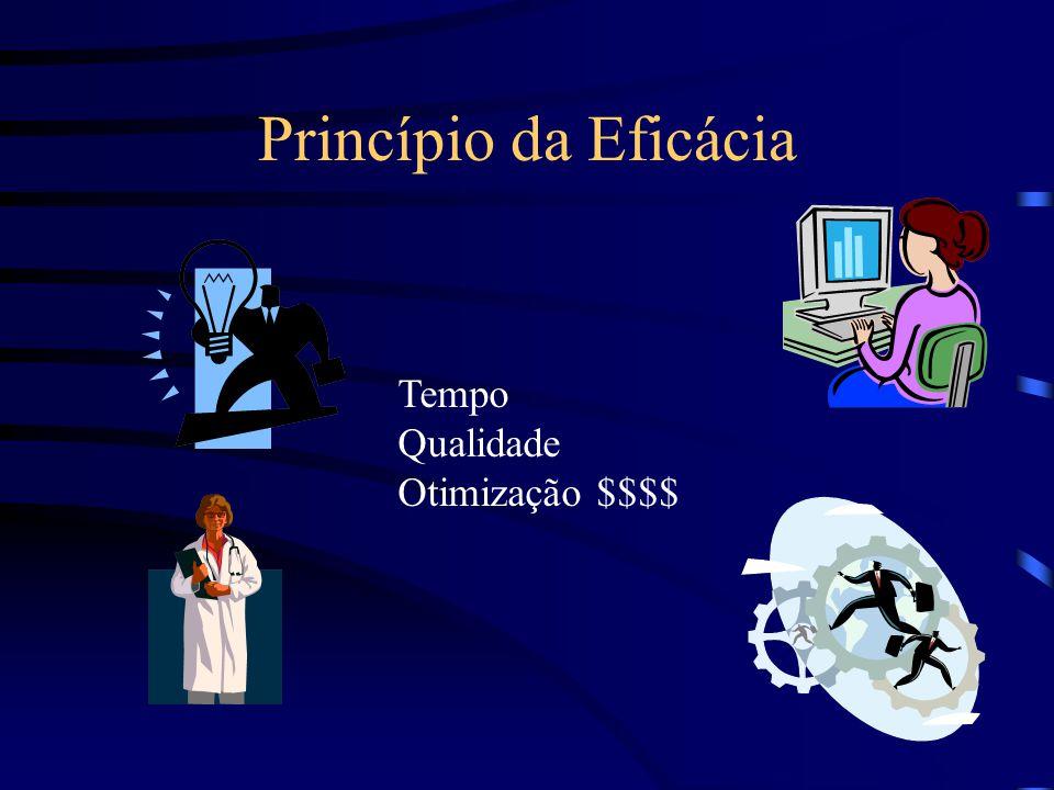 Princípio da Eficácia Tempo Qualidade Otimização $$$$