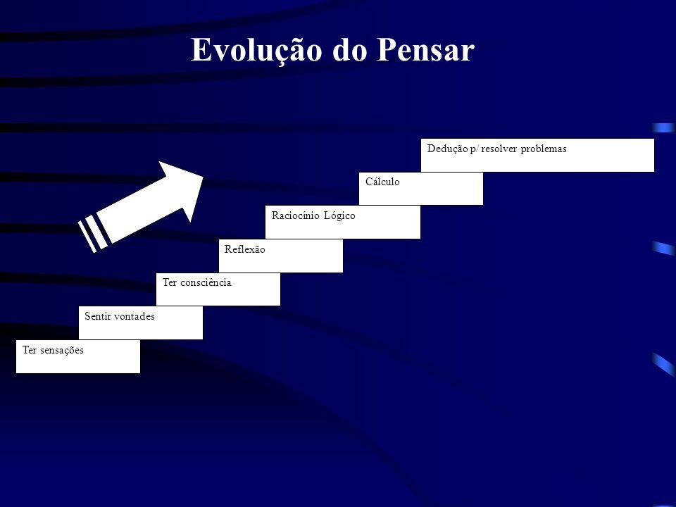 Ter sensações Sentir vontades Ter consciência Reflexão Raciocínio Lógico Cálculo Dedução p/ resolver problemas Evolução do Pensar