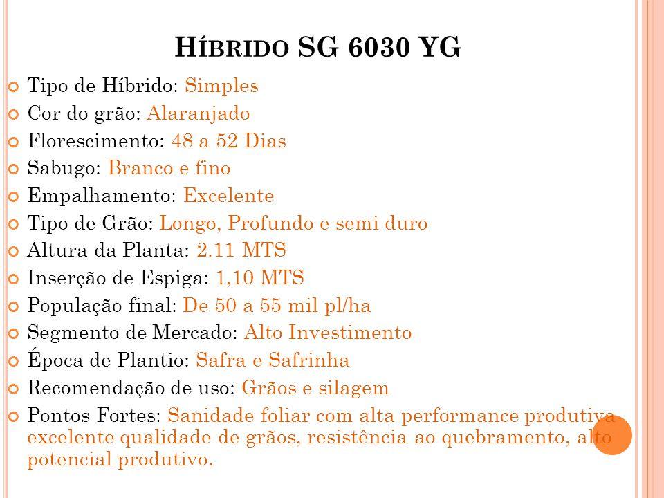 H ÍBRIDO SG 6030 YG Tipo de Híbrido: Simples Cor do grão: Alaranjado Florescimento: 48 a 52 Dias Sabugo: Branco e fino Empalhamento: Excelente Tipo de