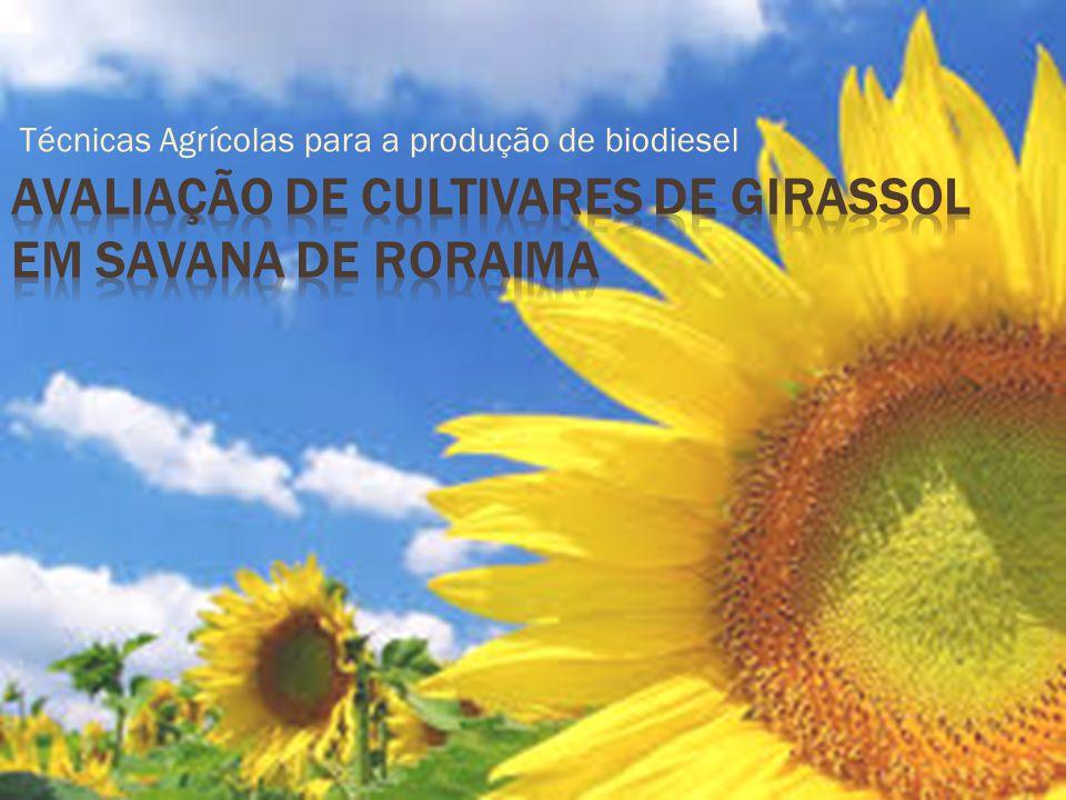 Técnicas Agrícolas para a produção de biodiesel