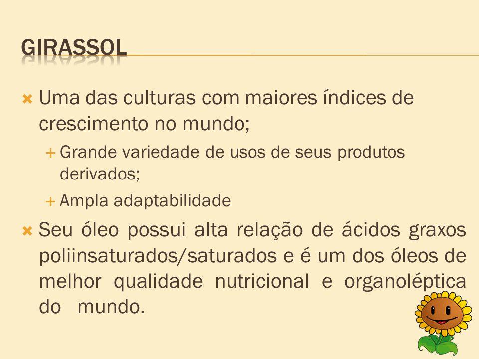  Época de semeadura;  Período de crescimento vegetativo;  Época favorável para o plantio;  O rendimento obtido pelo girassol.