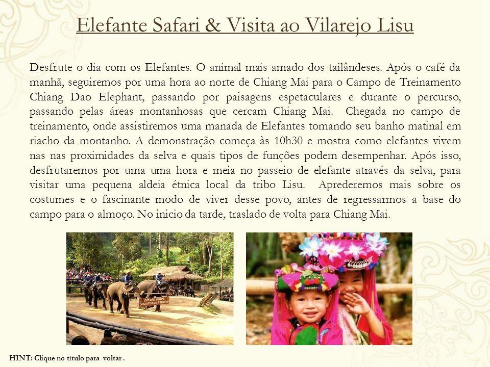 HINT: Clique no título para voltar. Elefante Safari & Visita ao Vilarejo Lisu Desfrute o dia com os Elefantes. O animal mais amado dos tailândeses. Ap