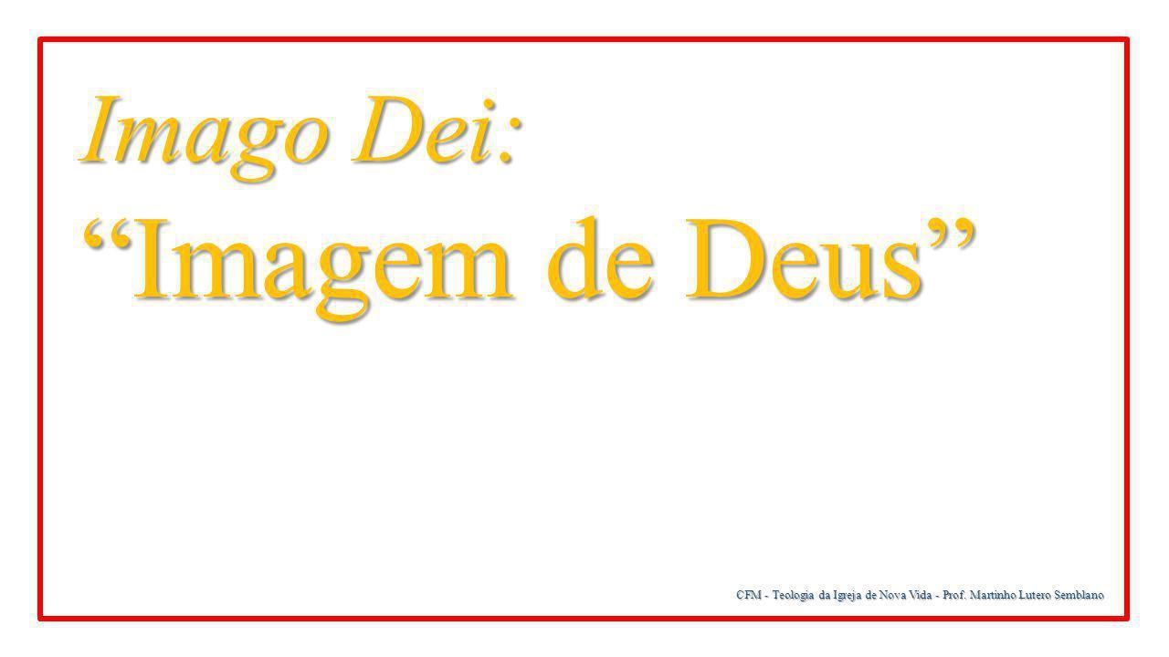"""CFM - Teologia da Igreja de Nova Vida - Prof. Martinho Lutero Semblano Imago Dei: """"Imagem de Deus"""""""