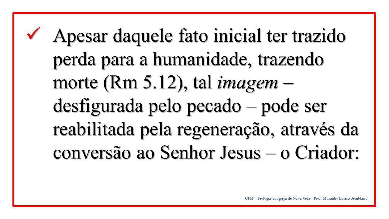 CFM - Teologia da Igreja de Nova Vida - Prof. Martinho Lutero Semblano Apesar daquele fato inicial ter trazido perda para a humanidade, trazendo morte