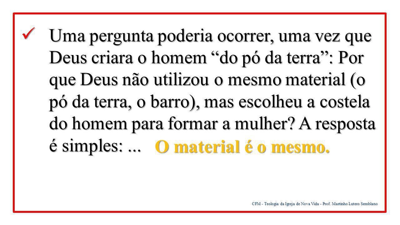 """CFM - Teologia da Igreja de Nova Vida - Prof. Martinho Lutero Semblano Uma pergunta poderia ocorrer, uma vez que Deus criara o homem """"do pó da terra"""":"""