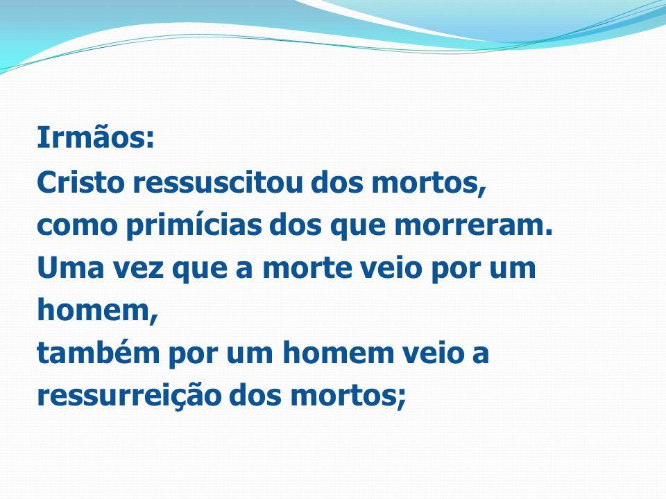 Irmãos: Cristo ressuscitou dos mortos, como primícias dos que morreram. Uma vez que a morte veio por um homem, também por um homem veio a ressurreição