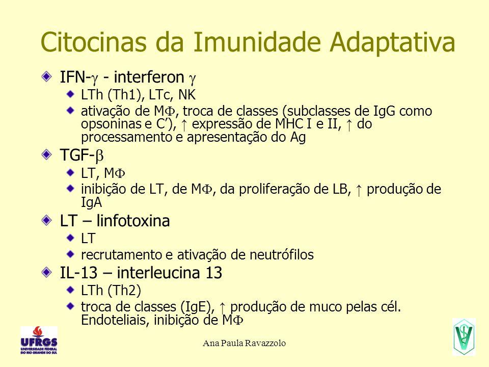 Ana Paula Ravazzolo Citocinas da Imunidade Adaptativa IFN-  - interferon  LTh (Th1), LTc, NK ativação de M , troca de classes (subclasses de IgG co