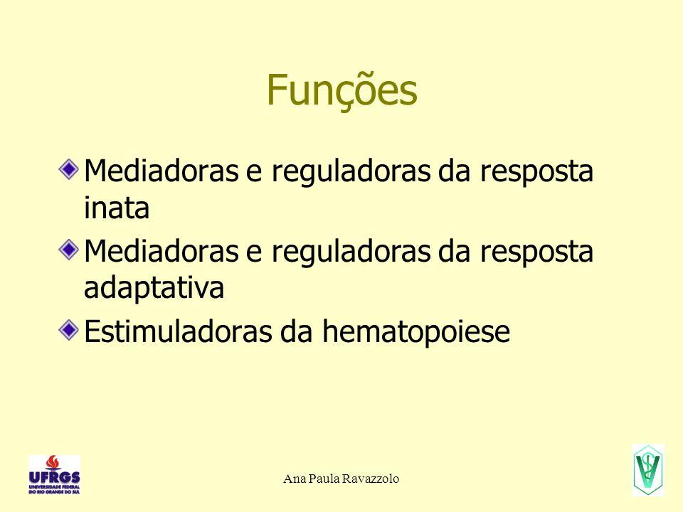 Ana Paula Ravazzolo Funções Mediadoras e reguladoras da resposta inata Mediadoras e reguladoras da resposta adaptativa Estimuladoras da hematopoiese